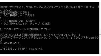 DR10-2YOIKEI、初期、CキリムCアルTグリーブ.jpg