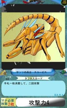 タフネスビギナーズカード スコーピス.jpg